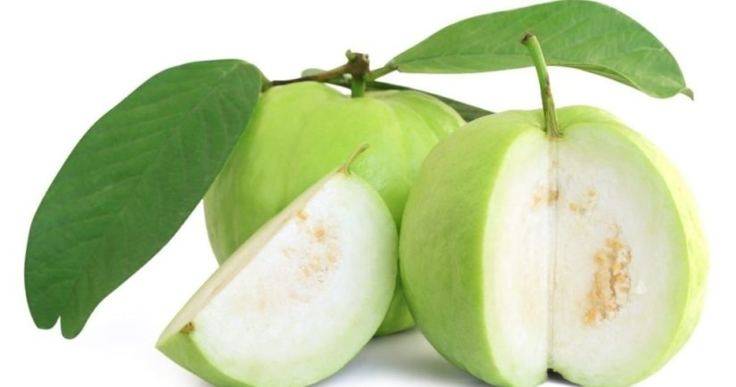 health benefits of eating guavas