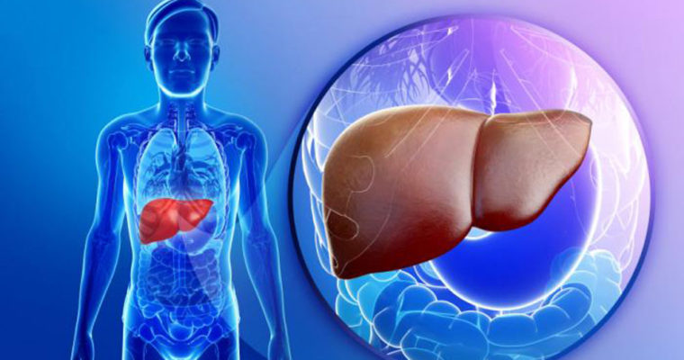Radish for liver