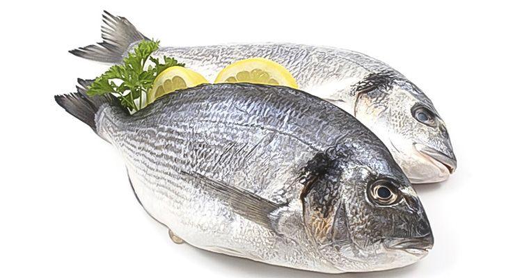 6 Amazing Health Benefits Of Tilapia Fish