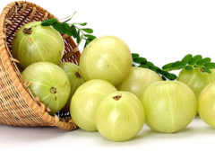 gooseberry or Amla During Pregnancy