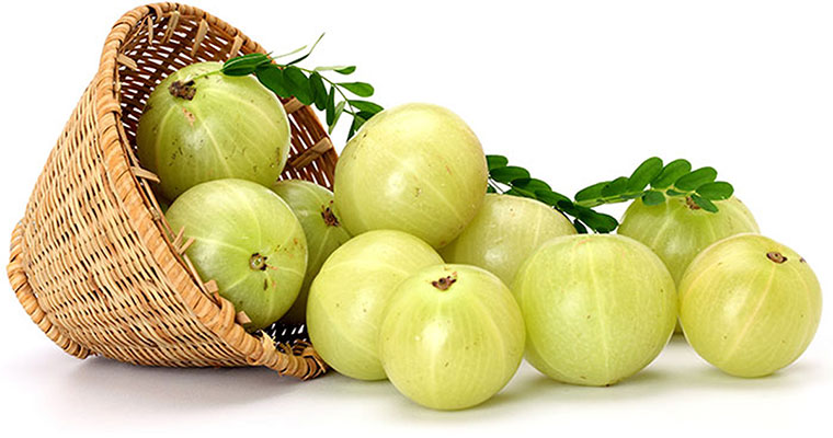 gooseberry or Amla During Pregnancy